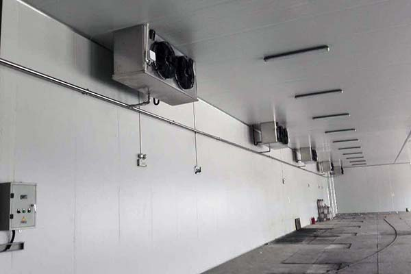 Condenser Fan Type Cold Room
