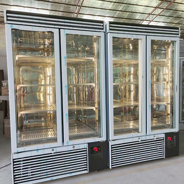 Cabinet freezer for commercial quick freezing