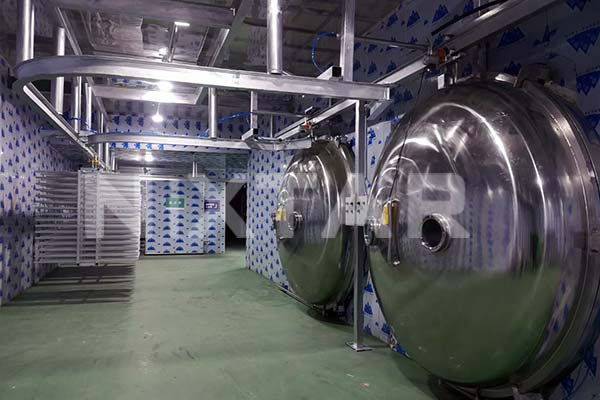 FD2000 Industrial Food Freeze Drying Plant